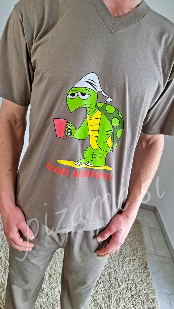 Pizama Turtle 1